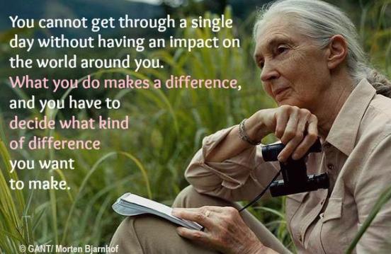 Jane Goodall Event!