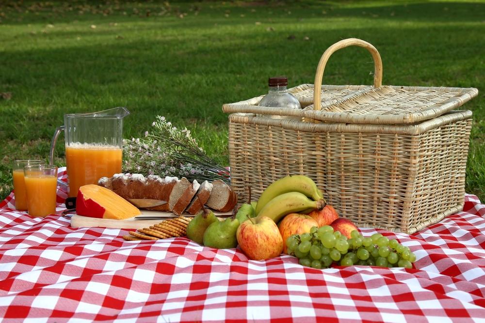 picnic-96613264